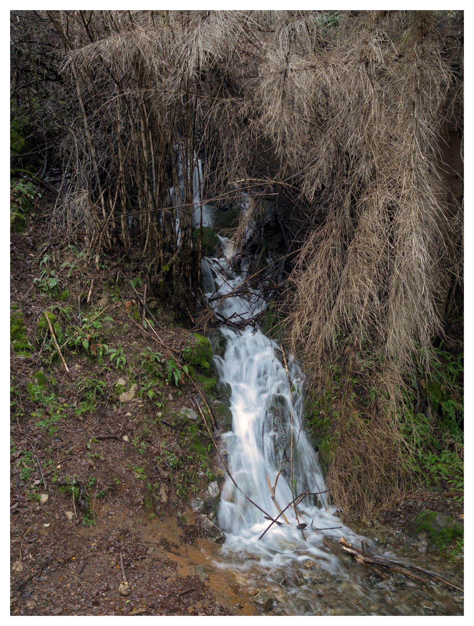 Cañón del Río Azul #12