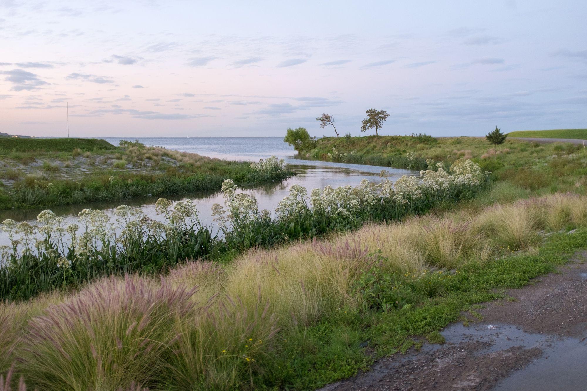 Ribera del Río de la Plata - Paseo de la Costa #02